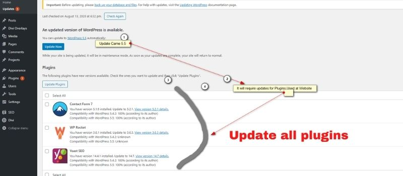 WordPress Update For Website Gives More Performance Improvement