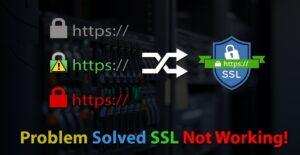 SSL errors & Bugs